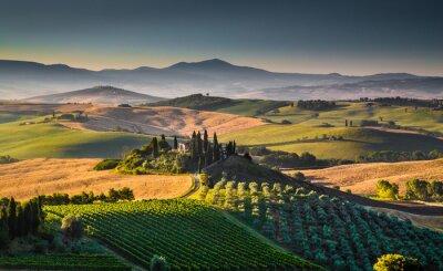 Obraz Scenic krajobraz Toskania o wschodzie słońca, Val d'Orcia, Włochy