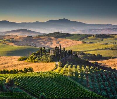 Obraz Scenic krajobraz Toskanii na wschodzie słońca, Val d'Orcia, Włochy