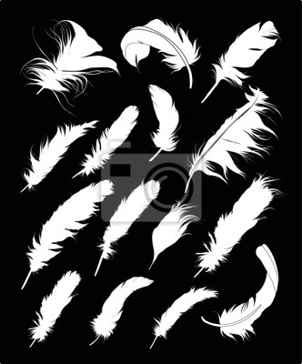 Set Feather