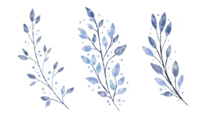 Obraz Set of beautiful vintage watercolor textured vector branch with blue leaves and dots. Winter wreath plant element. Floral foliage design artistic botany clip art collection.