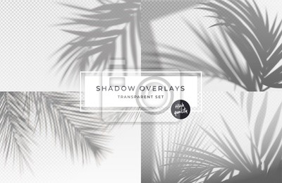 Obraz Set of shadow background overlays. Realistic Shadow mock up scenes. Transparent shadow of tropical leaves. Vector illustration