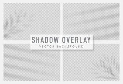 Obraz Shadow overlay effect. Transparent shadow of window. Vector illustration.