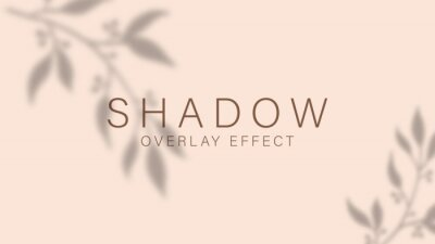 Obraz Shadow overlay effect. Transparent soft light and shadows from branches, plant, foliage and leaves. Mockup of transparent leaf shadow overlay effect and natural lightning. Vector mock up gradient mesh