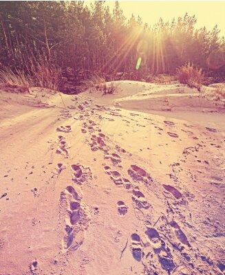Ślady na piasku, retro stylizowane tle przyrody.