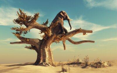 Obraz Słoń w suchym drzewie