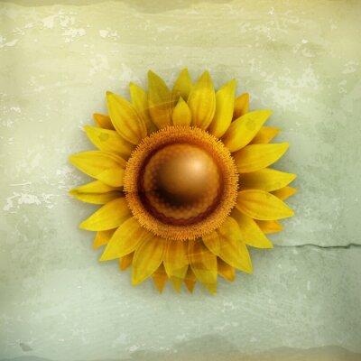 Obraz Słonecznik w starym stylu