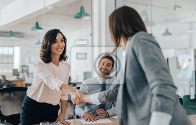 Obraz Smiling young businesswoman shaking hands with an office colleague