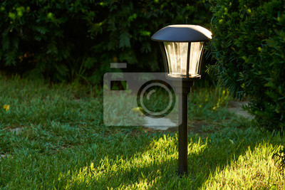 Obraz solar lights for outdoor pathway