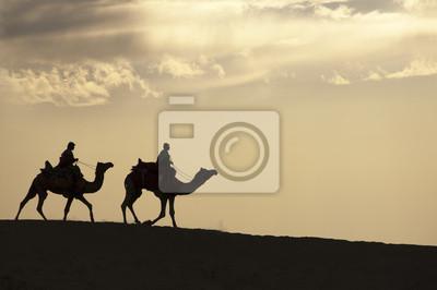 Spacerując na pustyni