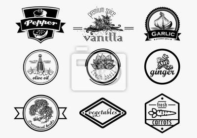 Spice zestaw logo w stylu vintage. Wektor ręcznie rysowane kolekcji przyprawy logotypy