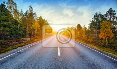 Obraz Sprawa scenicznego drogowego w Szwecji