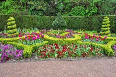 Obraz Spring flowers in Regent's park, London, UK