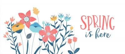 Obraz Spring season card of hand drawn cute flowers