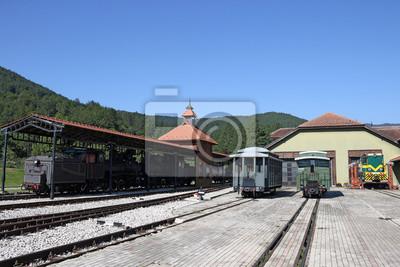 Stacja kolejowa z parą wodną i lokomotyw spalinowych i starych wagonów