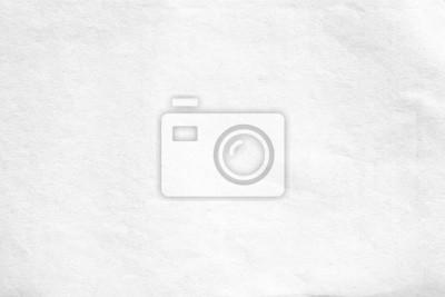 Obraz Stara biała papierowa tekstura