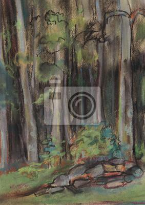 Obraz Stare drewno