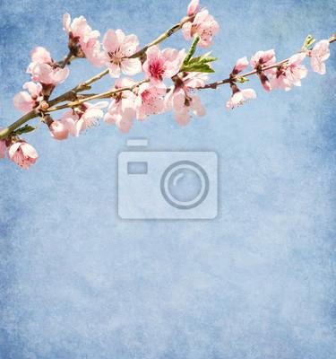Stare papieru z kwiatu brzoskwini