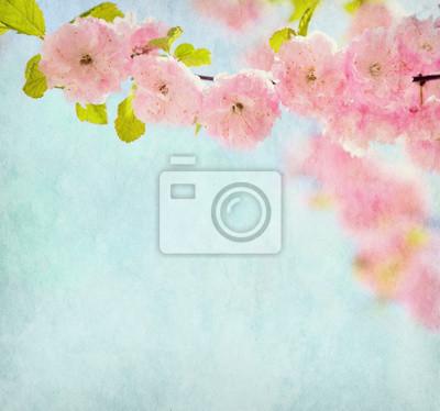 Stare tekstury papieru z pięknych różowych kwiatów (Kwitnienie migdałów).