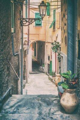 Obraz Stare ulicy w Riomaggiore, Cinque Terre we Włoszech.
