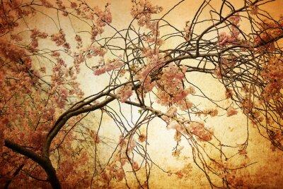 Obraz staromodny artystycznych kwiat