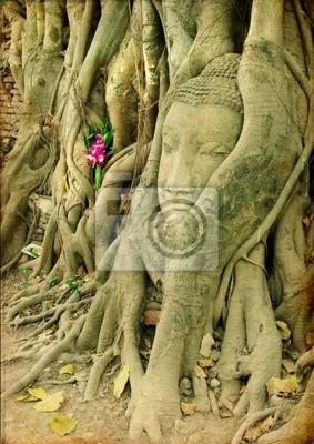 starożytny Tajlandia - twarz Budda wewnątrz starego drzewa