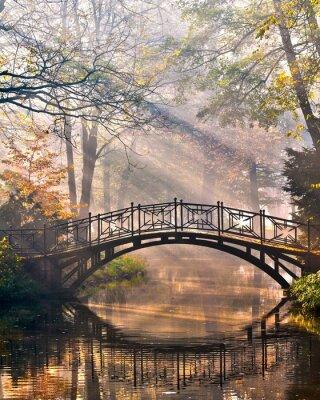 Obraz Stary most w parku jesienią misty