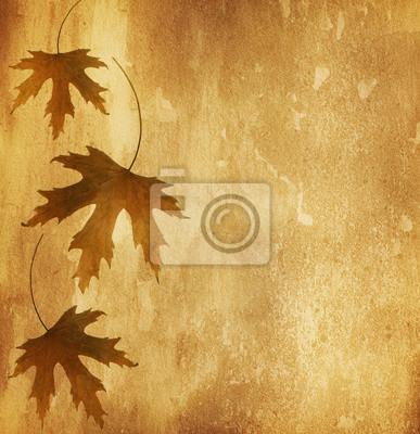 stary papier z suchych liści jesienią