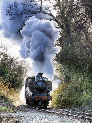 Obraz Steam Train