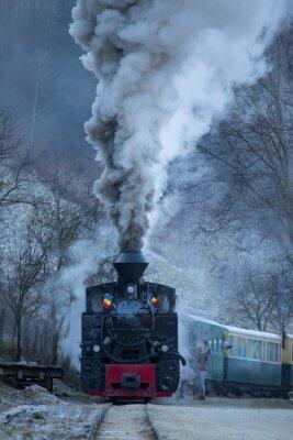Obraz Steam train puffing along the tracks