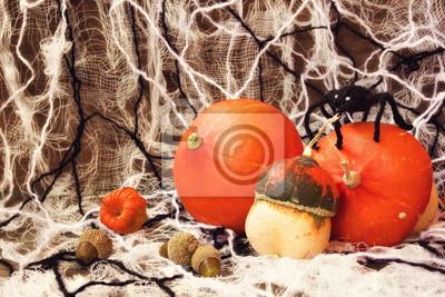 Obraz Straszny dekoracje na Halloween: dynie, internecie i pająki