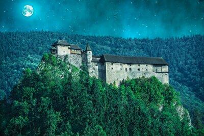 Obraz Straszny Zamek w lesie w nocy z księżyca