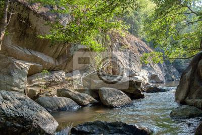 Strumienie wodospad / Strumienie wodospad z słonecznie w lesie.