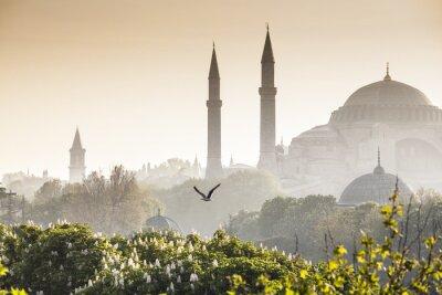 Obraz Sultanahmet Camii / Błękitny Meczet, Stambuł, Turcja