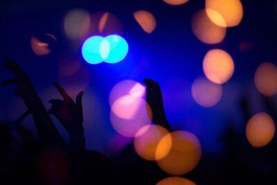 Obraz Summer festival concert crowd lights