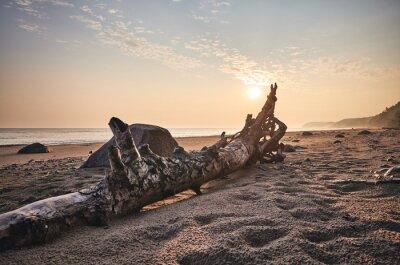 Sunrise over beach near Miedzyzdroje, color toning applied, Poland.