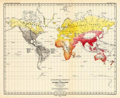 Obraz Świat rocznika