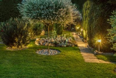 Obraz Światła w ładnym ogrodzie