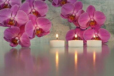 Obraz Świece z orchidei