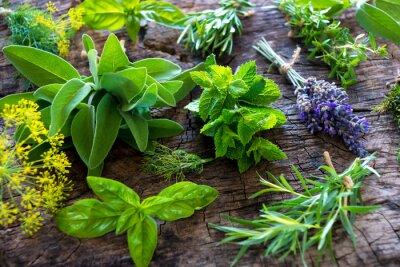 Obraz Świeże zioła na drewnianym tle