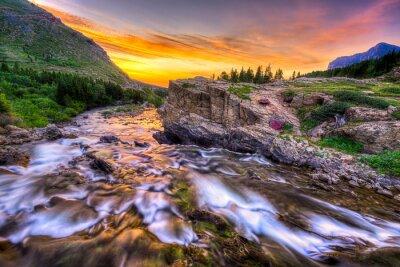 Obraz Swiftcurrent Creek at Dawn