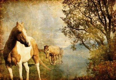 Obraz swiss jesień - zdjęcie archiwalne artystyczna