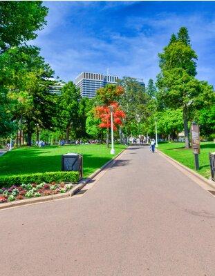 SYDNEY - NOVEMBER 2015: Tourists enjoy outdoor life in the city park