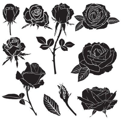 Obraz Sylwetka, bujna róża kwiaty ustawione