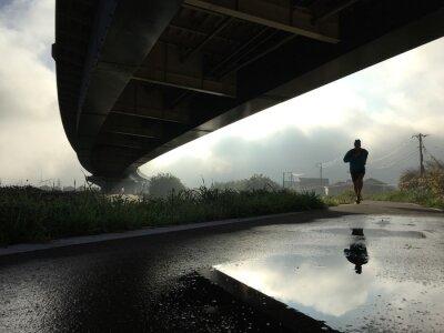 Obraz Sylwetka człowieka działa na ścieżce
