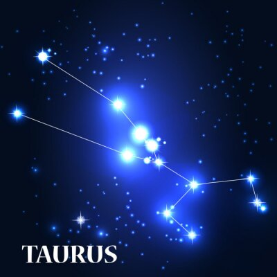 Obraz Symbol. Znak zodiaku Byk. Ilustracja wektora.