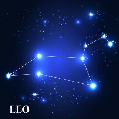 Obraz Symbol. Znak zodiaku Leo. Ilustracja wektora.