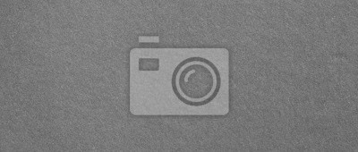 Obraz szare tekstury papieru