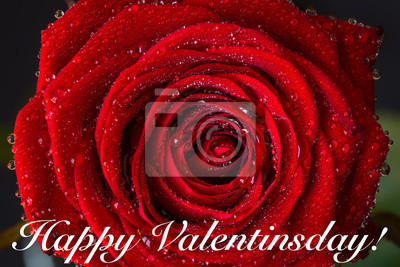 Szczęśliwy Valentinsday!