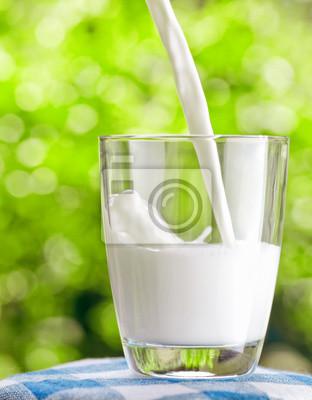 Obraz Szklanka mleka na tle przyrody