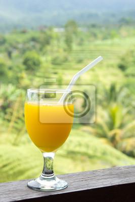 Szklanka soku pomarańczowego z tła pola ryżowe.